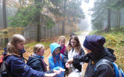 Schrenzerschüler durchwandern mutig das Tal des Nebels