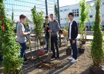 Schulgarten Pflanztag